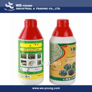 2.4-D 720g/L Ec, 2.4D, Herbicide pictures & photos