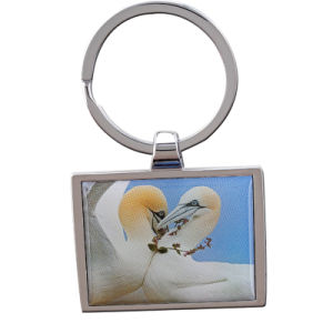 New Fashion Zinc Alloy Animal Blank Keychain for Promotion pictures & photos