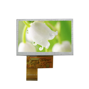 4.3 Inch 480X272 Resolution TFT LCD Display with Touch Use for Elevator pictures & photos