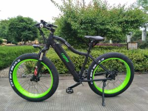 250-350W Brushless Motor Fat Electric Bike pictures & photos
