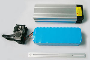 Lithium 48V 13ah Silver Fish Li-ion Battery for Ebike and Scooter in China with Stock pictures & photos