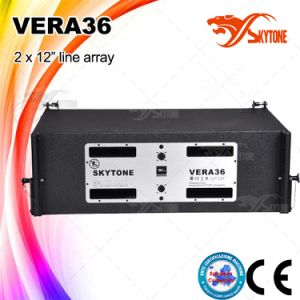 Vera36 Powerful 1600watts Line Array System Speaker pictures & photos