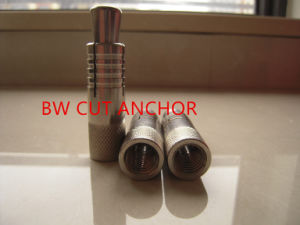 Stainless Steel Cut Anchor pictures & photos