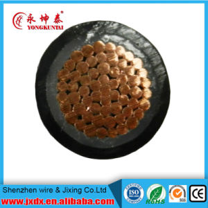 Two Cores Copper Cable Braided Electrical Wire, Copper Cable, Power Cable, Twisted Pair Cable (BYW-8001) pictures & photos