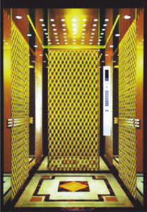 Best Resplendent Passenger Elevator for Hotel pictures & photos
