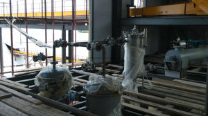 Palm Seed/Oil Plant/Turn-Key Project pictures & photos