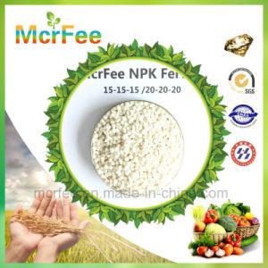 High Nitrogen NPK 15-15-15 Green Fertilizer for Crop pictures & photos