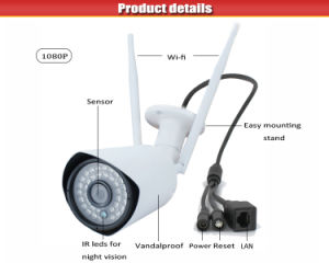 Outdoor IP66 1080 CMOS Wireless Outdoor Camera pictures & photos