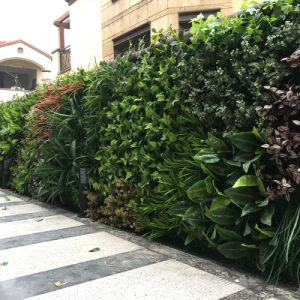 Outdoor Use Plastic Artificial Grass Wall pictures & photos