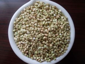 Chinese Buckwheat Kernels Yulin Origin pictures & photos
