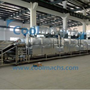 Vegetable and Fruit Dryer Machine/Drying Machine for Vegetables and Fruits pictures & photos