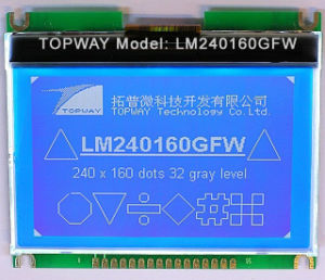 240X160 Graphic LCD Display Cog Type LCD Module (LM240160G) with Touch Screen pictures & photos