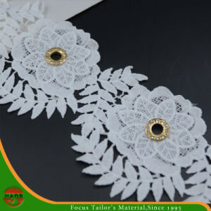 100% Cotton High Quality Embroidery Lace (HSS-1715) pictures & photos