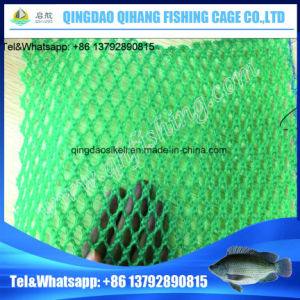 Tilapia Fish Farming Floating Eco-Friendly Circle Shape Fish Farming Cage in China pictures & photos