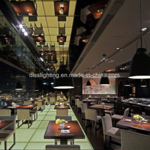 Simple Modern Design Acrylic Iron Pendant Light for Coffee Shop Decoration pictures & photos