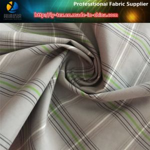Nylon/Polyester Intertexture Yarn Dyed Plaid Fabric pictures & photos