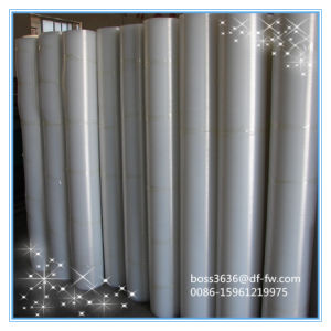F2 Film Grade Transparent LDPE pictures & photos
