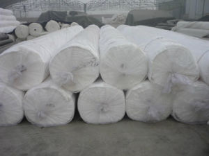 High Quality Filament Spunbonded Needle-Punched Geotextile pictures & photos