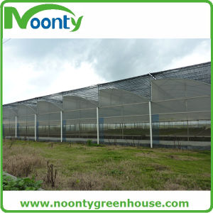 Prefabricated Plastic Film Greenhouse with Hot-Gavalnized Steel Structure pictures & photos