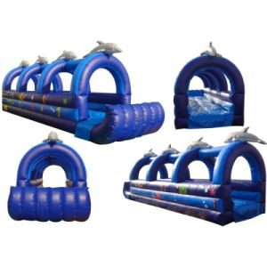 2017 New Water Slide Giant Inflatable pictures & photos