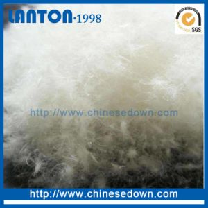 Chinese Factory Supplier Cheap Goose/ Duck Down pictures & photos