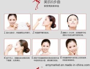 Face Care Moisturizing Nourishing Facial Mask Pilaten Show Beauty Mask pictures & photos