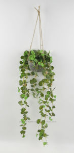 Various Artificial Leaves Hanging Potting with Paper Cone for Decoraiton of Door/Window/Garden pictures & photos
