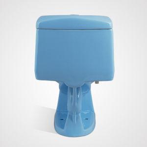 Fashionable Design Ceramic Dual Flush Cistern Blue Sanitary Ware pictures & photos