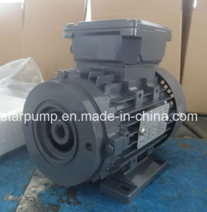 Reducer Motor Special Three Phase Reducer Motor pictures & photos