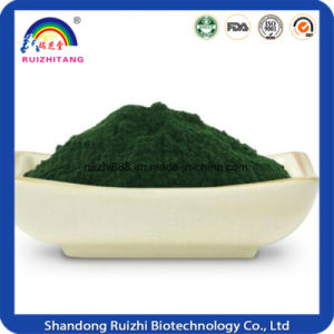 100% Pure Organic Spirulina Powder pictures & photos