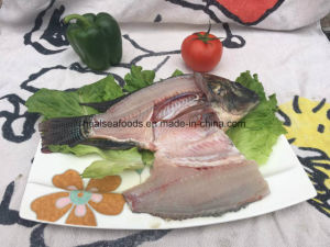 Frozen Black Tilapia Fish From China pictures & photos