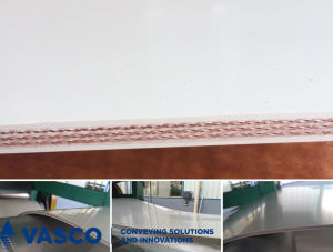 FDA Grade Conveyor Belts for Light Duty pictures & photos
