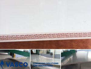 FDA Grade White Conveyor Belts for Light Duty pictures & photos