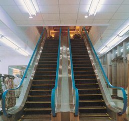 Fujizy Indoor Escalator with 30 Degree 1000mm Step Width pictures & photos
