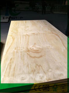 Furniture Grade Radiate Pine Plywood pictures & photos