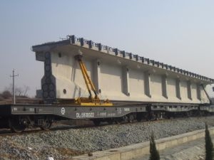 Railway Freight Special Train Wagon pictures & photos