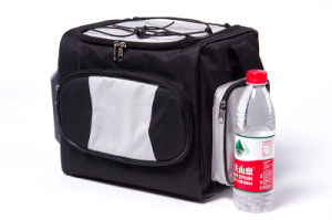 Portable Electronic Soft Cooler Bag 12liter, DC12V with Cooling and Warming Function pictures & photos