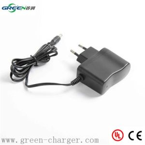 7.2V 0.6A LiFePO4 Battery Charger pictures & photos