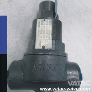 Vatac Wcb/Lcb/Wc9/Ss304/Ss316 Thermostatic Steam Trap pictures & photos
