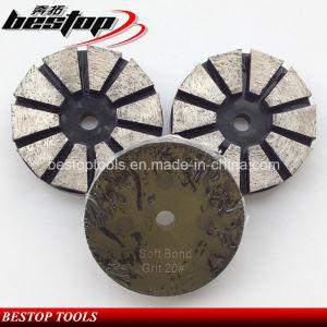 Floor Grinders 10 Segs Grinding Discs with 3 Screw Holes pictures & photos