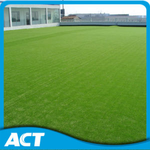 UV Resistance Artificial Landscaping Garden Lawn Turf L30 pictures & photos