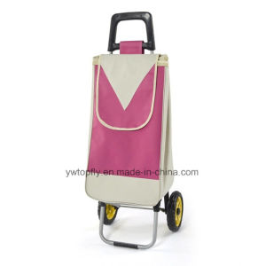 Foldable Shopping Cart for Supermarket with 2 Wheels pictures & photos