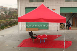 Pop-up Mosquito Net Tent/ Folded Bed Canopy pictures & photos