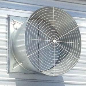Ventilation Fan for Poultry Farming House pictures & photos