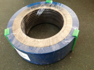Spiral Wound Gaskets with Outer Rings pictures & photos