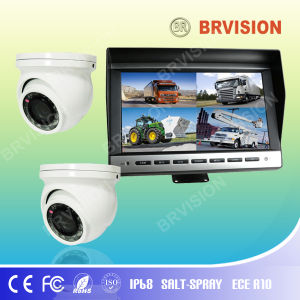 "10.1"" TFT Digital Monitor System with Auto Fuction pictures & photos"