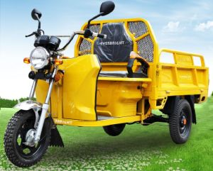 Electric Cargo Tricycle Motorcycle, Three Wheeler