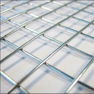 China Factory Best Price Electric Galvanized Welded Wire Mesh pictures & photos