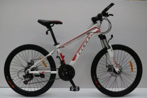"""26"""" 21speed /24 Speed Alloy Mountain MTB Bike Bicycle /Disc Brake/Wenda Tire/High Quality Parts pictures & photos"""