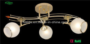 Factory Diirect White Chrome Iron Ball Shape Glass Chandelier/Ceiling Lighting pictures & photos